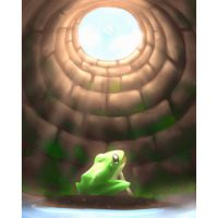 a_frog_in_a_welle28094never_having_seen_the_wholeef7e8c47374cc6984d30-1